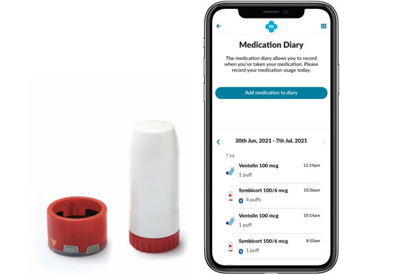 Digital companion products