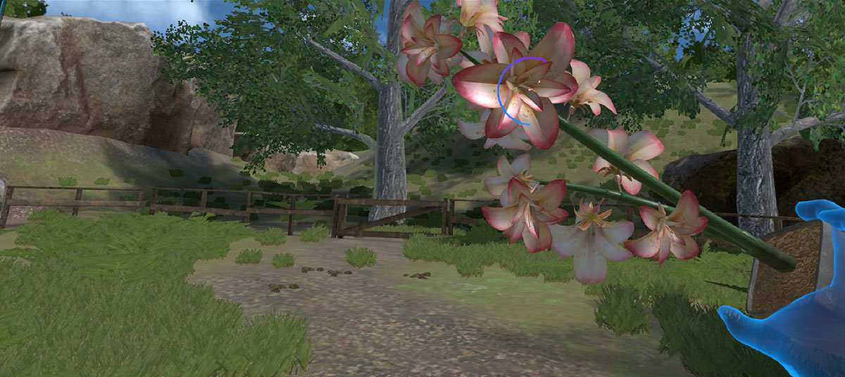 virtual reality app mindful observation